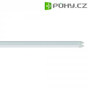 LED zářivka Osram, G13, 22 W, 230 V, 1513 mm, studená bílá