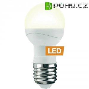 LED žárovka Ledon P45, 28000166, E27, 5 W, 230 V, 90 mm, teplá bílá