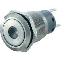 Tlačítko antivandal bez aretace TRU COMPONENTS LAS1-AGQ-11D, GN, 250 V/AC, 5 A, nerezová ocel, 1x zap/(zap), zelená