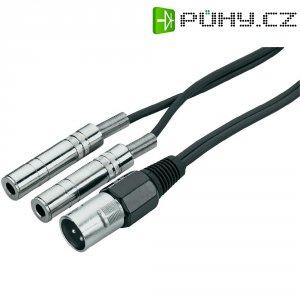 Dvojitý kabel 2x jack (F) 6,3 mm / XLR (M), 0,6 m