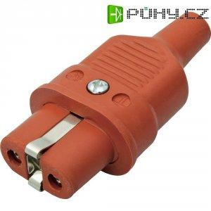 Síťová IEC zásuvka Kalthoff 344Si, 250 V 16 A, červená, 344005
