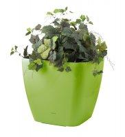 Květináč G21 CUBE 45 cm zelený samozavlažovací
