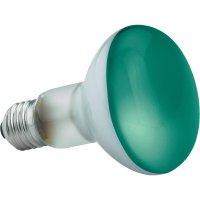 Žárovka Paulmann, 25063, 60 W, E27, stmívatelná, zelená