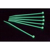 Stahovací fosforescenční pásek Conrad, 200 x 2,5 mm, 100 ks, zelená