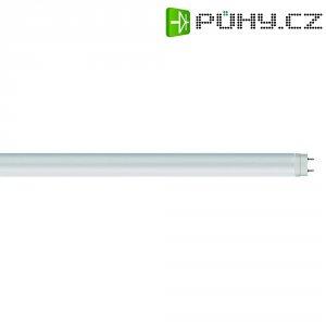 LED zářivka Osram, G13, 18 W, 230 V, 1213 mm, studená bílá