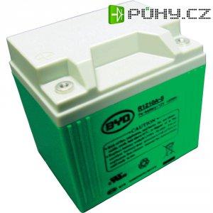 Akumulátor LiFE BYD, 12 V, 10 Ah A+BMS