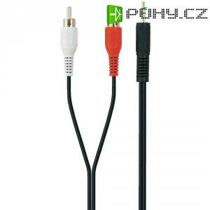 Připojovací kabel Belkin jack zástr. 3.5 mm/cinch, černý, 2m