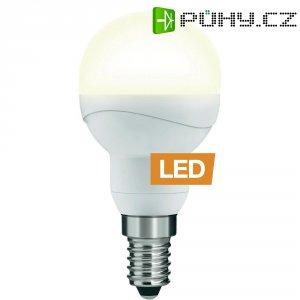 LED žárovka Ledon P45, 25000643, E14, 5 W, 230 V, stmívatelná, teplá bílá