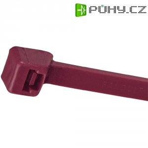 Stahovací pásek z HALARu Panduit PLT1M-C702Y, 102 x 2,5 mm, fialová