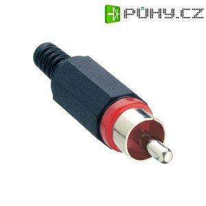 Cinch konektor Lumberg XSTO 1, 2pól., červená