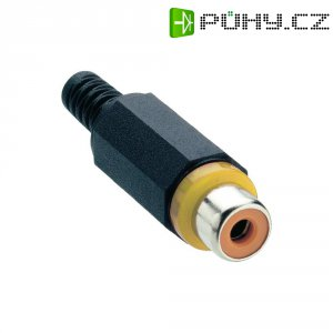 Cinch konektor Lumberg XKTO 1, 2pól., žlutá