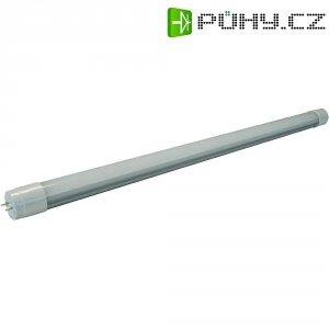 LED žárovka Mueller G13, 18 W, studená bílá, 120 cm