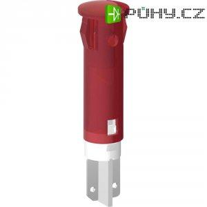 Signálka LED Signal Cons, SKGD05204, 24 V/DC / 24 V/AC, bar./transp, PC pouzdro, zelená
