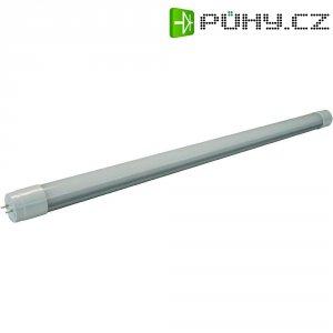 LED žárovka Mueller G13, 22 W, teplá bílá, 150 cm
