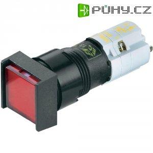 Prosvětlený tlačítkový spínač RAFI LEUCHTDRUCKTASTER 1Ö+1S, 1NC / 1 NO, 250 V/AC, 4 A