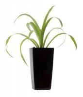 Květináč G21 LINEA 26 cm černý samozavlažovací