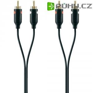 Připojovací kabel Belkin, cinch zástr./cinch zástr., černý, 2 m