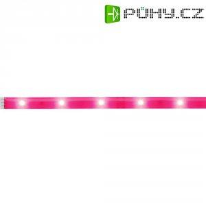 LED pásek Paulmann YourLED Deco Stripe 70484, 1 m, 2,4 W, neonově růžová