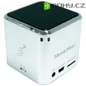 Mobilní mini sound stanice Technaxx MusicMan ®, stříbrná