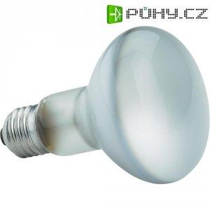 Žárovka Paulmann, 24060, 60 W, E27, stmívatelná, teplá bílá