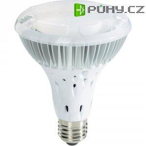 Světelný zdroj Highpower LED PAR30
