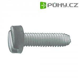 Plastové šrouby s válcovou hlavou, DIN85, M4 x 40, 10 ks
