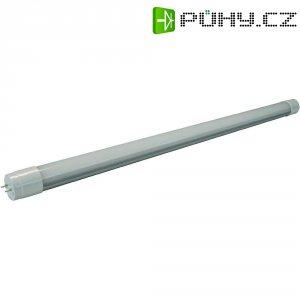LED zářivka Mueller G13, 10 W, teplá bílá, 60 cm