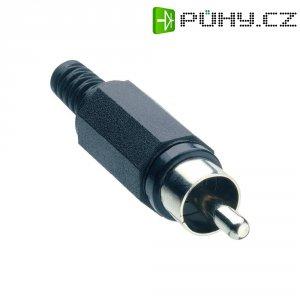Cinch konektor Lumberg XSTO 1, 2pól., černá