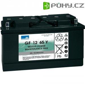 Gelový akumulátor, 12 V/65 Ah, Exide Sonnenschein GF-Y 8889771000