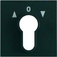 Rámeček zámkového spínače Gira, standard 55, antracit (066428)