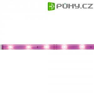 LED pásek Paulmann YourLED Deco Stripe 70436, 1 m, 2,4 W, neonově fialová