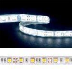 LED pásky - studená bílá