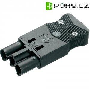 Síťová zástrčka Adels Contact AC 166 GSTPF/3, 250 V, 16 A, černá, 162563V9