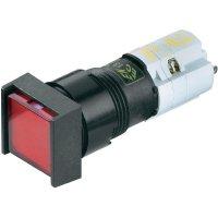 Prosvícené tlačítko RAFI LEUCHTDRUCKTASTER 2Ö+2S, 2 NC/2 NO, 250 V/AC, 4 A, černá