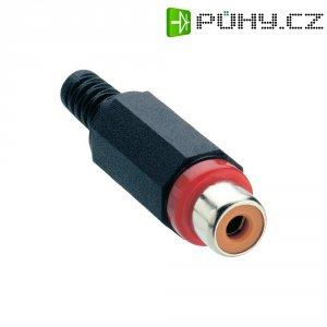 Cinch konektor Lumberg XKTO 1, 2pól., červená