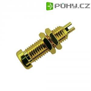 Laboratorní konektor Ø 4 mm SKS Hirschmann BU 10 Au (930147700), zás. vest. vert., zlatá