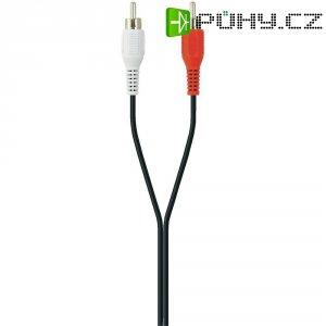 Připojovací kabel Belkin, cinch zástr./cinch zástr., černý, 5 m