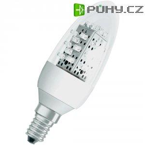 LED žárovka Osram E14, 1,6 W, teplá bílá, svíčka