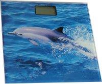 Osobni váha SKYMARK 2,5-150kg digitální, modrá