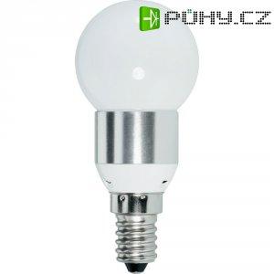 LED žárovka Renkforce E14, 3,6 W = 25 W , matná, studená bílá