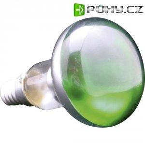Žárovka, 91348, 25 W, E14, zelená