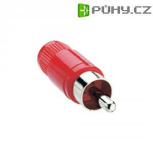 Cinch konektor Lumberg STO 1, 2pól., červená