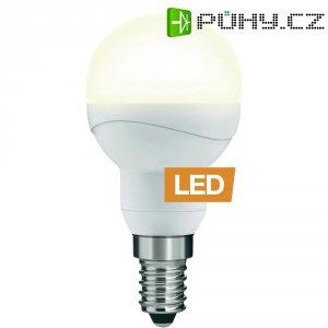 LED žárovka Ledon P45, 25000642, E14, 5 W, 230 V, teplá bílá