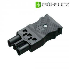 Síťová zásuvka Adels Contact AC 166 GBUPF/3, 250 V, 16 A, 165563V9