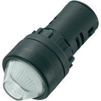 LED signálka AD16-22HS/12V/W, LED signálka, 12 V/DC / 12 V/AC, bílá