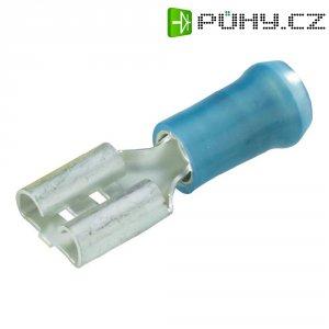 Faston zásuvka TE Connectivity 156666-1 6.3 mm x 0.8 mm, 90 °, částečná izolace, modrá, 1 ks