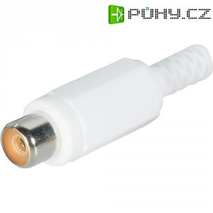 Cinch konektor BKL Electronic 1108014/T Pólů: 2, zásuvka, rovná, bílá, 1 ks