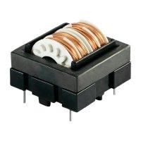 Odrušovací filtr Schaffner EH24-1,0-02-10M, 250 V/AC, 1 A
