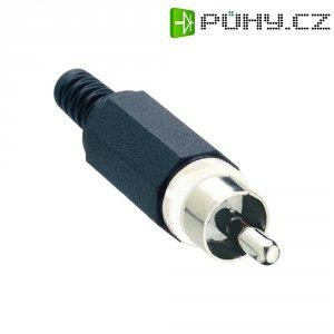 Cinch konektor Lumberg XSTO 1, 2pól., bílá