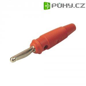 Banánkový konektor zástrčka, rovná Ø pin: 4 mm červená SKS Hirschmann VQ 30 1 ks